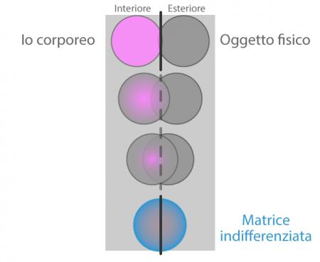 F1-Differenziazione-int-est