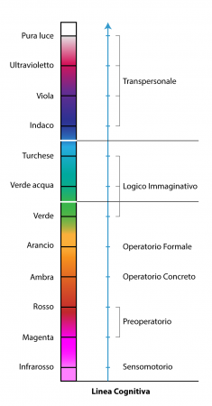 Linea-cognitiva-stadi-semplificata