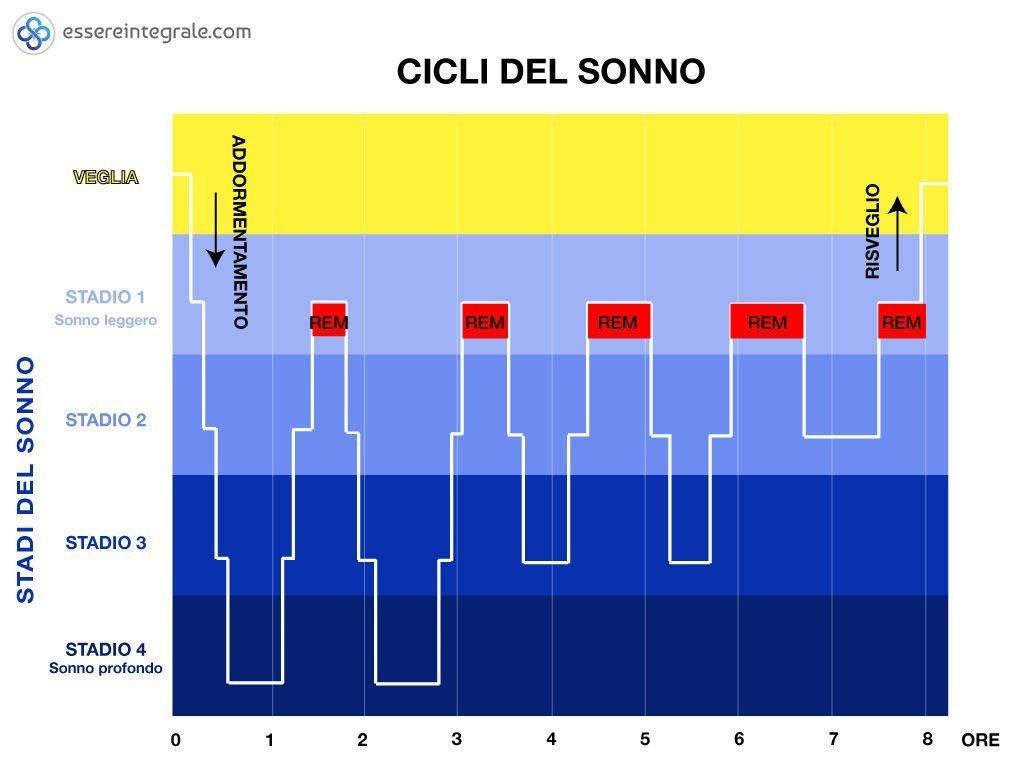 I cicli del sonno