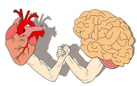 Cuore - Cervello Braccio di ferro
