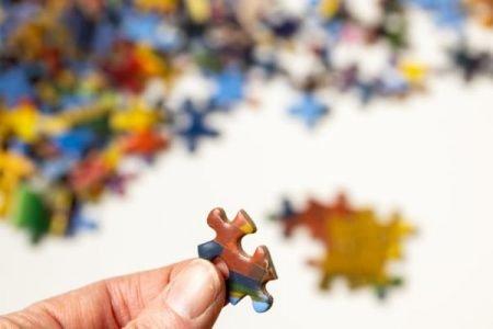 Puzzle Integrazione Differenziazione